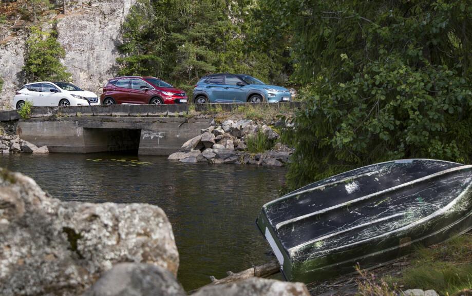 VERDT Å VENTE?: Det renner mye vann under broa før nordmenn får sin elektriske folkebil som når opp til hytta. Foto: Jamieson Pothecary.