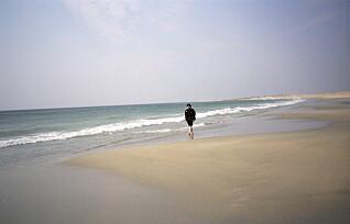 «Hitlertennene» og landets lengste sandstrand. Her er Norges skjulte skatter