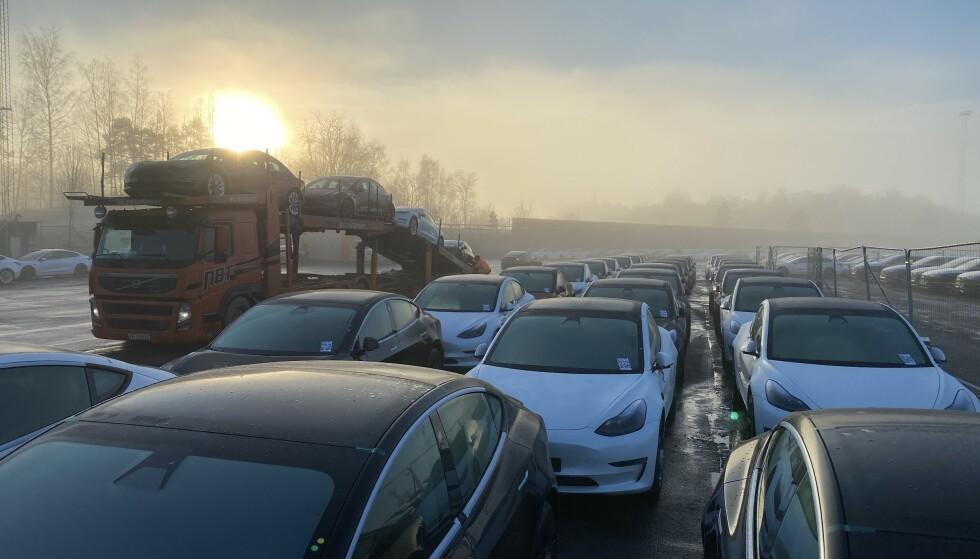 RETT UT: Bilfrakterne stod klare, og sender bilene rett til utleveringssted. Foto: Fred Magne Skillebæk