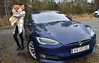 Valpen satt fast i Jannes Tesla: - Hadde den vært litt større, hadde det ikke gått