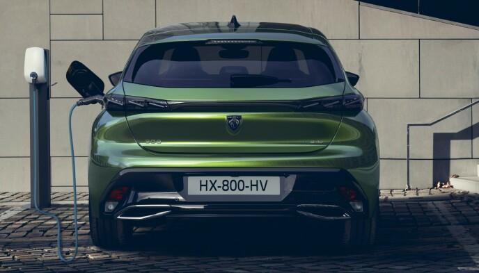 KABLET: 308 kommer både som ladbare hybrider og som batterielektriske utgaver. Foto: Produsenten.