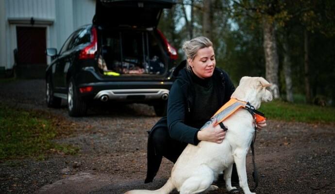 Tilvenning: Tren på den transportmetoden som skal brukes når hunden blir voksen, råder Kine Bjølsen Opstad i if. Foto: If