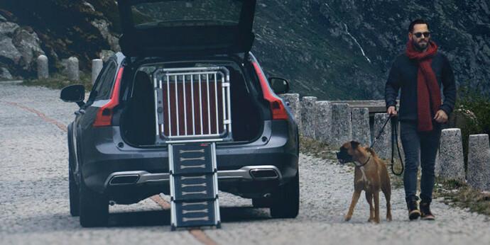 Rampe: En rampe gjør turen inn buret enklere for hunden. Foto: 4pets/buddy