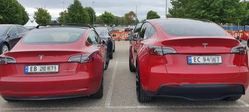 Tesla Model Y eller Model 3? Her er alt du må vite