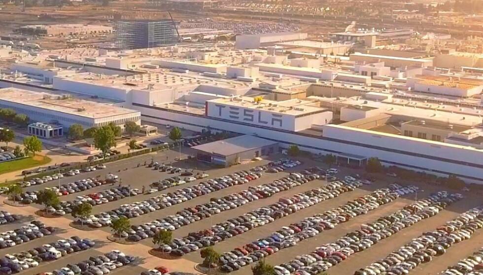 TESLA-DOMINANS: 2 av 3 solgte elbiler i USA fra januar til juli i år, var en Tesla. Foto: Tesla