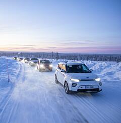 Image: Her er dommen etter en lang vinter