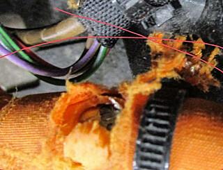 Image: Her har musa tatt seg en jafs av strømkabelen i en e-golf