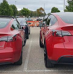 Image: Tesla Model Y eller Model 3? Her er alt du må vite